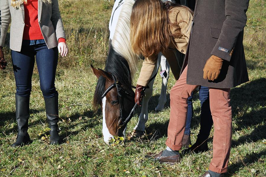 Detaljbilder er noe av det viktiste med shooten. Dette er for at dere skal bedre se hvordan både plagg og sko er på mennesker - og ikke bare på kleshengeren. Selvfølgelig måtte hesten få litt gress mellom slagene også.