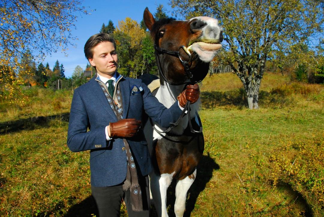 hest_DSC0338